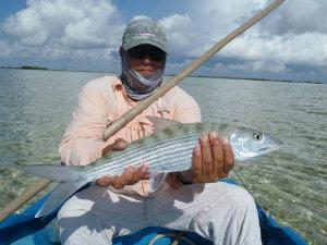Adisbelbonefish