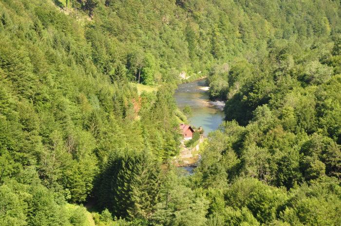 River Kupa near its source